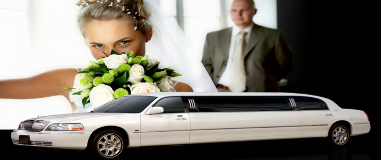 GRATUITY FOR A LIMO WINDOWS 7 DRIVER